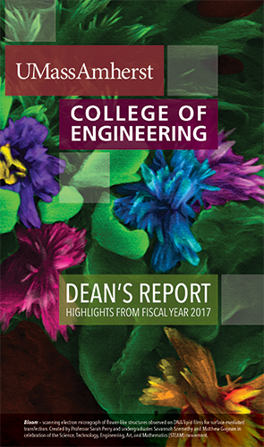 Deans Report 2017 Cover image